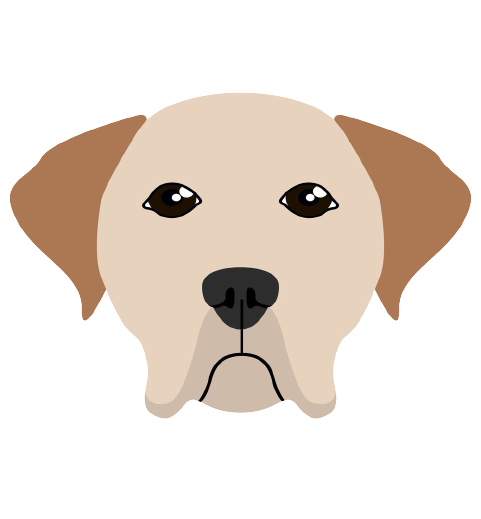 dog trainers easton pa